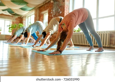 fitness, sport and healthy lifestyle concept - group of people doing yoga downward-facing dog pose on mats at studio