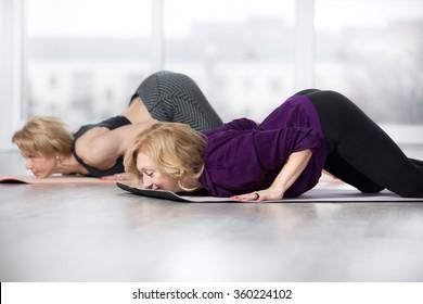 Fitness, stretching practice, group of two attractive fit mature women working out in sports club, doing easy alternative to Chaturanga Dandasana, half push-up, Caterpillar pose, Ashtanga Namaskara