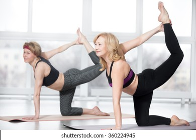 Fitness, stretching practice, group of two attractive mature women working out in sports club, doing balance exercise bird dog, sunbird (chakravakasana) for abs and back muscles in class, full length