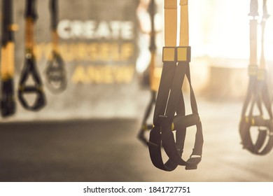 Fitness trx straps inside of a gym, functional training equipment and sport accessories