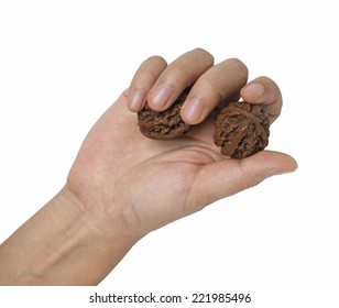 fitness Walnut in hand. In china, rotate walnuts (or ball) in hand is a way of exercise descending from ancient times.