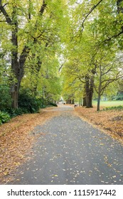 Fitzroy Gardens near Melbourne CBD on Autumn.