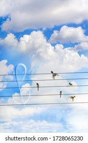 Five birds land and sitting on the wires like on a stave against the backdrop of a cloudy sky