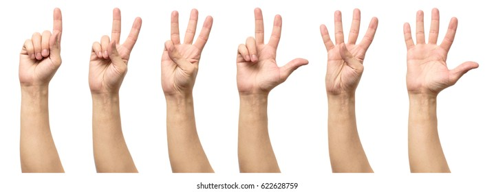 Five counting male hands isolated on white background