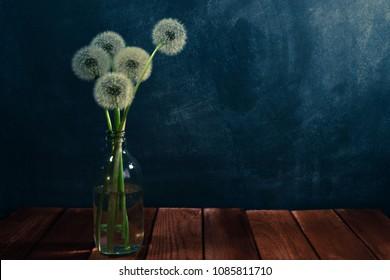 Five dandelions in a vase bottle. Beautiful dark-blue background.