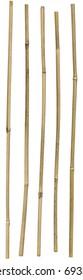 Five dried ornamental bamboo sticks. Very high-res. Clean edges, no shadows.
