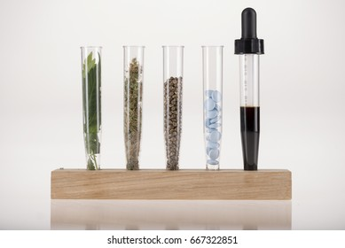 Five element of cannabis in test tubes, leaves, buds, seeds, medical pills, dropper with oil on white, on wooden base for test tubes , medical marijuana concept