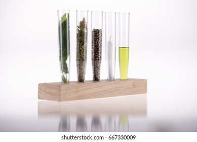 Five element of cannabis in test tubes, leaves, buds, seeds, joint, cannabis distilled oil, with lseeds in focus ,other element are blurred, medical cannabis concept