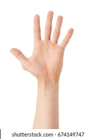Five fingers on a white background