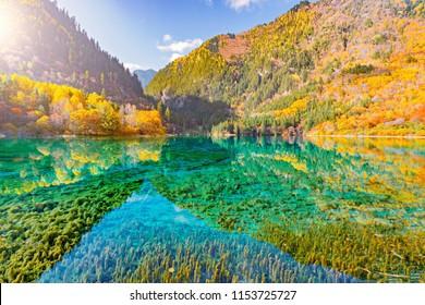 Five Flower Lake at autumn sunrise time. Jiuzhaigou nature reserve, Jiuzhai Valley National Park, China.