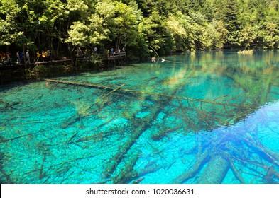 Five flower lake in Jiuzhai valley. China