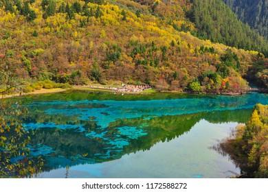 Five Flower Lake, Jiuzhaigou.
