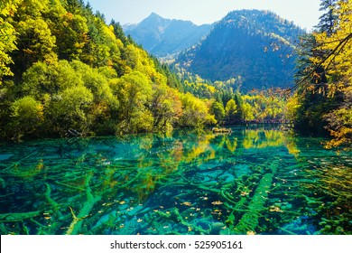 Five Flower Lake,  Jiuzhaigou, Sichuan, China  UNESCO World Heritage (Natural)