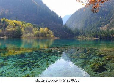 Five Flower Lake , Jiuzhaigou ( Sichuan, China )