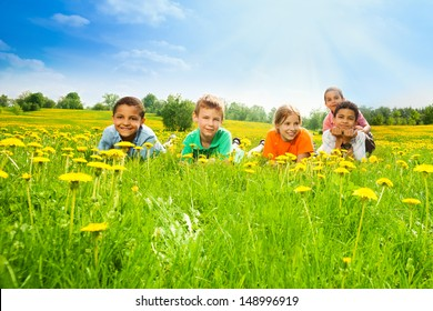 Five happy kids laying in the dandelion field in the sunny early summer day