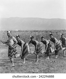 Five Maori men posing in traditional clothing doing haka dance. The dance of the New Zealand natives employs facial distortions to enhance dance expression. Ca. 1905.