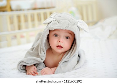 Five months old baby boy in a character towel after taking a bath or shower, in bed at home. Nursery for children