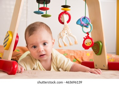 Five months old baby girl from Slovenia lying on tummy and holding head under playing bridge and playing with toys - gentle look