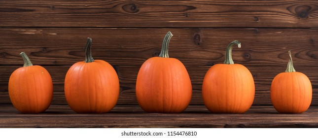 Five orange pumpkins in a row on dark wooden background, Halloween concept