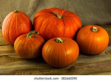 Five pumpkins on a dark wooden background. Pumpkins. Thanksgiving Day. Halloween. Vegetables