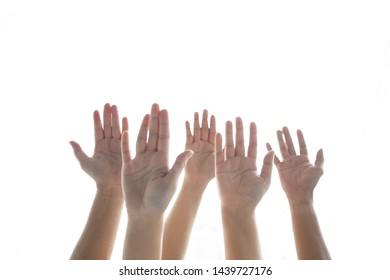 Five raising hands participation with isolated white background and copyspace.