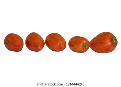 Five red ripe strip tomatoes.