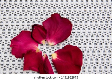 Five red rose petals on patterned background