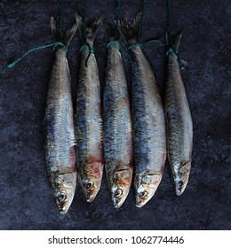 Five sardine fish hanging on string