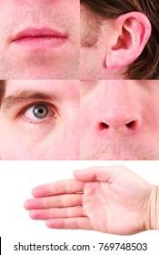 Five Senses Photos