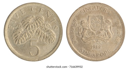 Five Singaporean cent with image of monster leaves attractive or delicacy isolated on white background