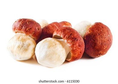 five small white mushrooms on white background
