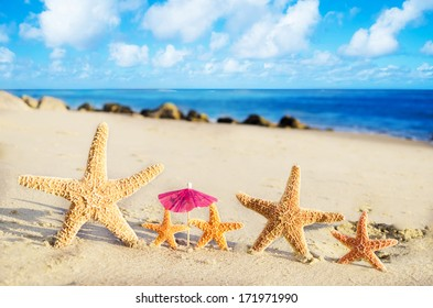 Five Starfishes on the sandy beach by the ocean
