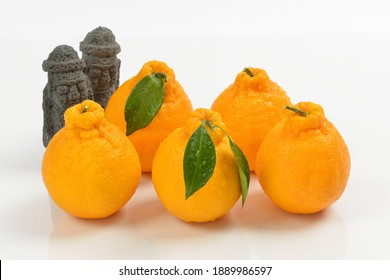 Five Tangerines Hallabong with two black Dolhareubangs on white background, South Korea. It is a cultivar of citrus fruits bred in Japan in 1972