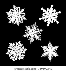 Five white shapes of different snowflakes isolated on black background. These silhouettes based on photos of real snow crystals: large stellar dendrites with fine hexagonal symmetry and elegant forms.