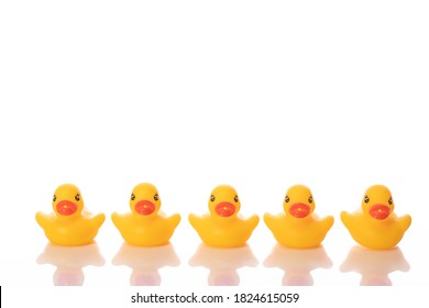 five yellow rubber duckling in raw, reflected in glass surface isolated on white background. Minimal style. Team strength concept copy space