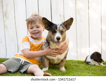 A five-year-old boy hugs a corgi dog. In the background a small puppy sits by the fence.