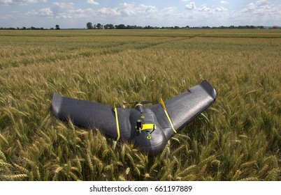 Fixed wings drone laying on a surface of a wheat field. The drone landed on its belly after successful aerial imaging mission.