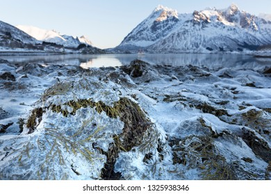 Fjord landscape on the Lofoten islands, Norway, Europe, in winter