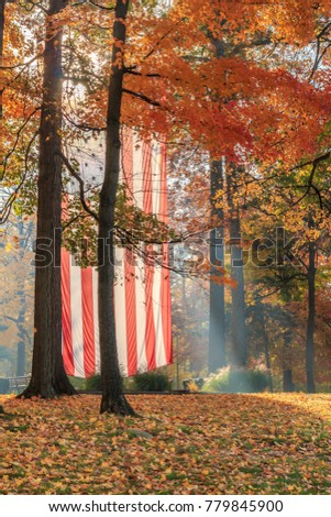 Flag in Autumn Trees
