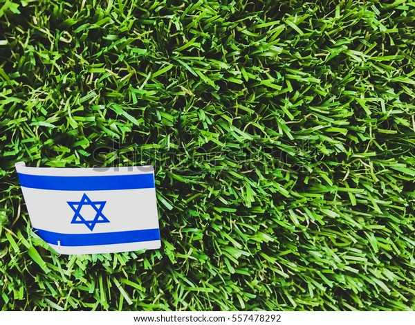 Flag Israel On Green Grass Close Stock Photo (Edit Now