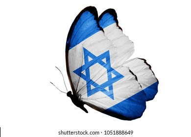 flag of Israel on the wings of a butterfly