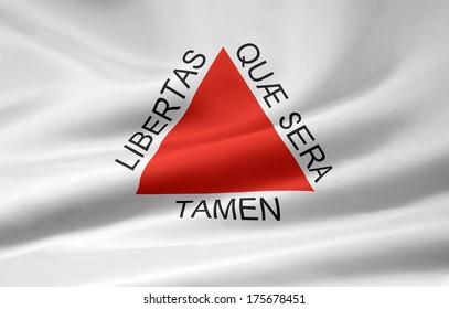 Flag of Minas Gerais - Brazil