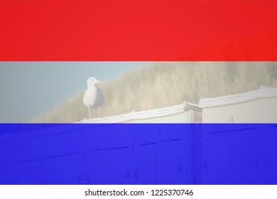 Flag of Netherlands in minimalistic design and high quality
