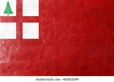 Flag of New England, USA, painted on leather texture
