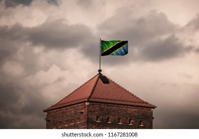 Flag with original proportions. Flag of the Tanzania