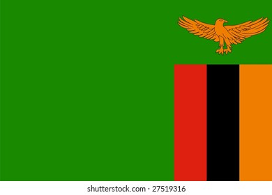 Flag of Zambia. Illustration over white background