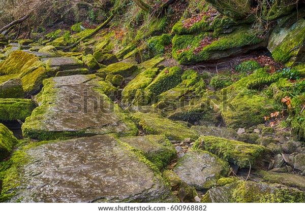 Flagged path with mossy rocks