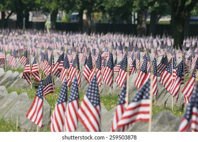 Flags in a cemetery on Veterans Day.