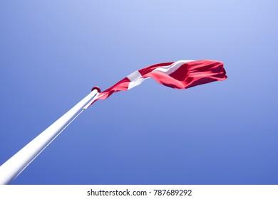 Flags / Denmark: The Danish national flag Dannebrog waving in the wind