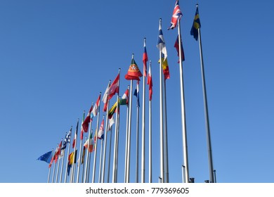 The flags of the EU states wave as a symbol of the union 06